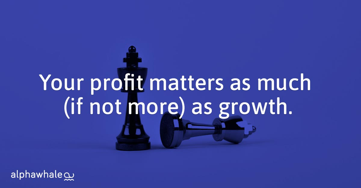 Profit-matters-mpre-than-growth